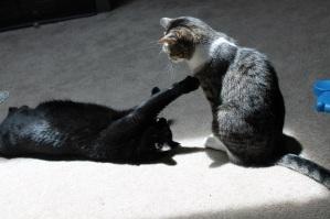 "Norie playing ""I'm not touching you."""