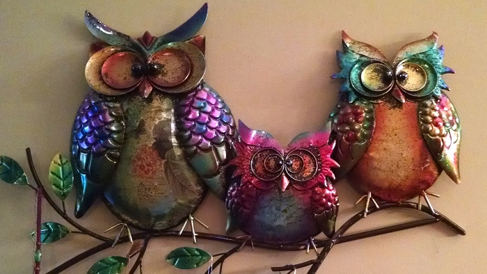 Three funny owls to increase the animal energy and humor.