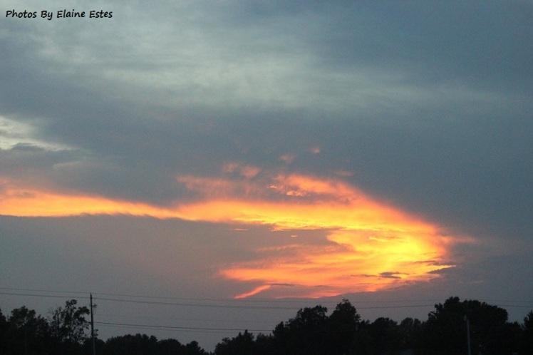 Golden Arrow sunset.