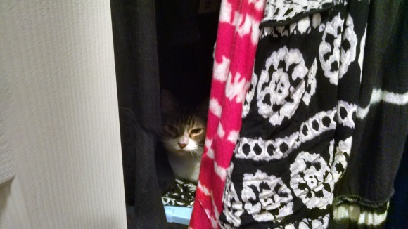 Sister in closet camouflage.