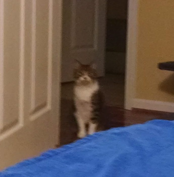 Sister staring at me from the door.
