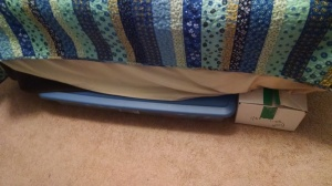One large, low lying plastic box to protect the underside of my bed.
