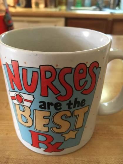 Nurses are the Best Mug
