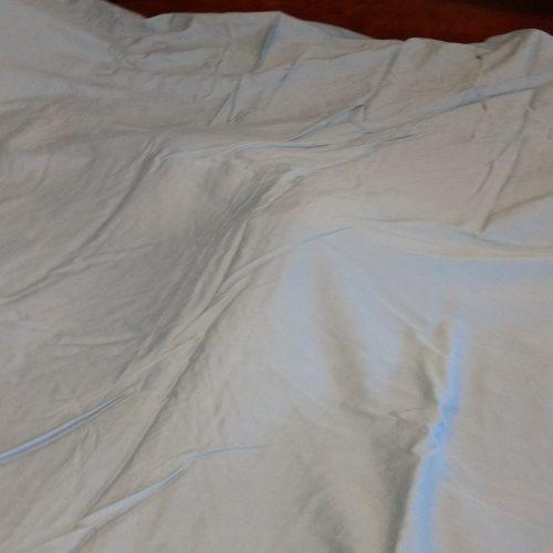 Cat lump under the sheet.